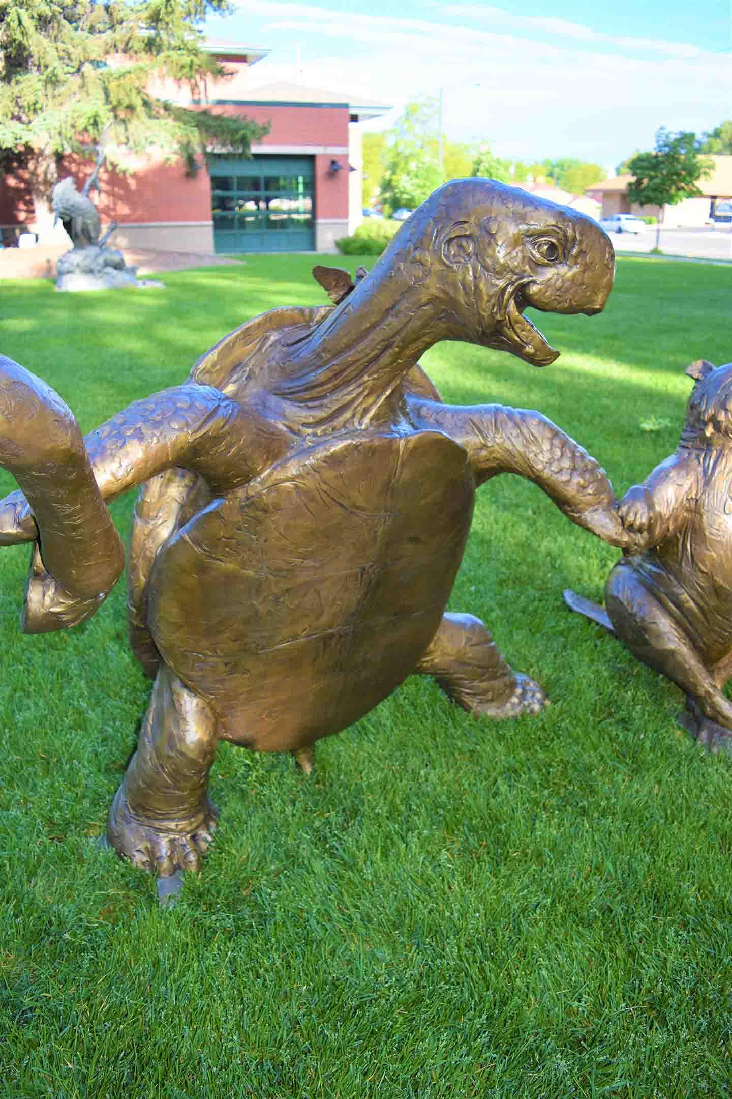 Tortoise - web